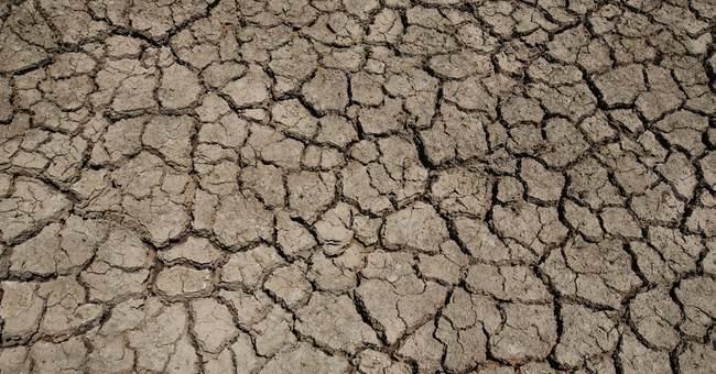 Thai farmers ask spirits for rain to end crippling drought