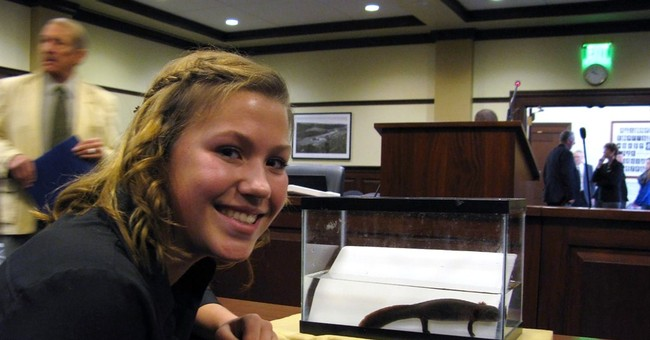 Idaho salamander bill squashed over federal overreach fears
