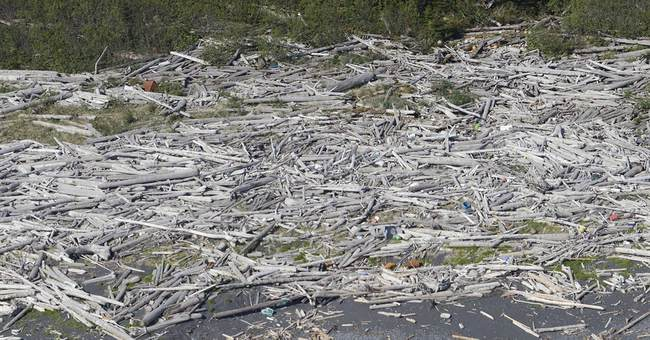 Massive debris removal project to get underway in Alaska