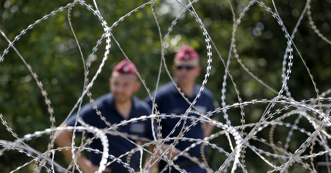 Hungary puts inmates to work on border fence to bar migrants