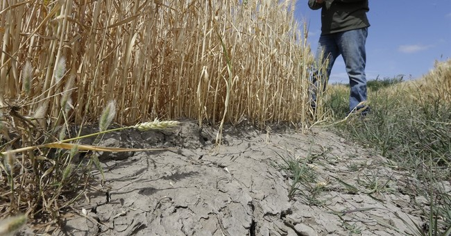 California flexes muscles in water tussle with farmers