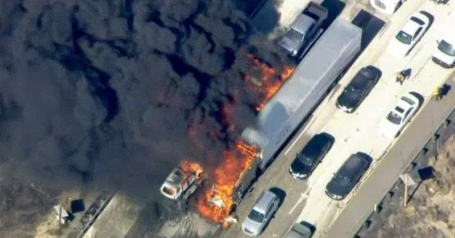 Motorists flee as wildfire races across California freeway
