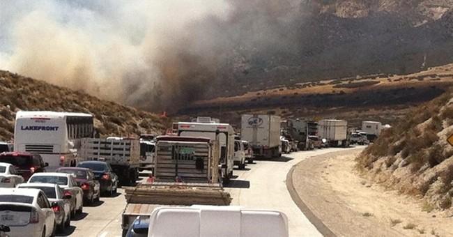 Motorists flee as wildfire races across California freeway