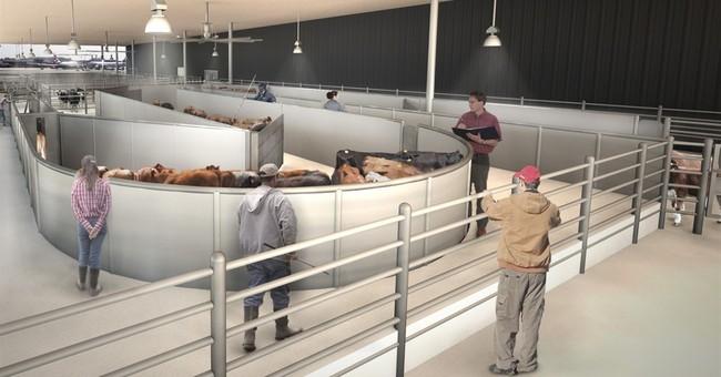 NYC's Kennedy airport building luxury animal terminal