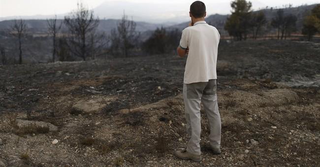 Spanish firefighters bring major forest blaze under control