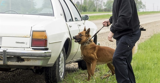 US court says drug-sniffing dog fails the smell test