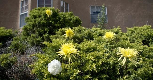 Albuquerque Fire Department dispatcher's license suspended