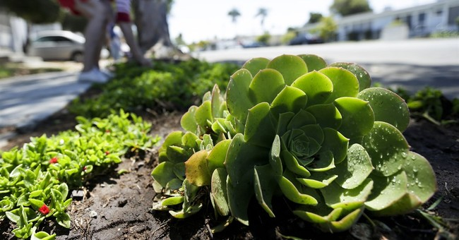 California zeroes in on conservation stragglers amid drought