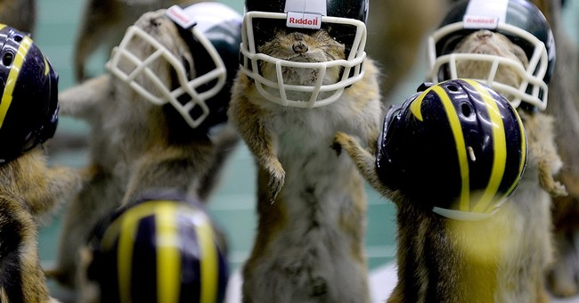 Michigan taxidermist recreates football rivalry