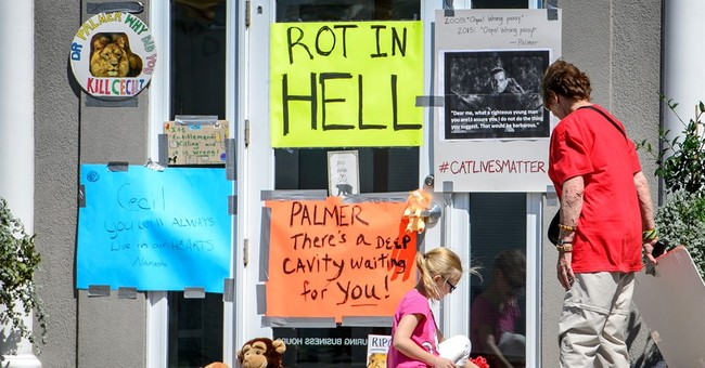 Details about the lion hunt that caused outrage across globe