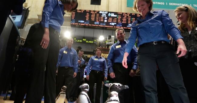 SeaWorld attendance keeps falling, but shares inch higher
