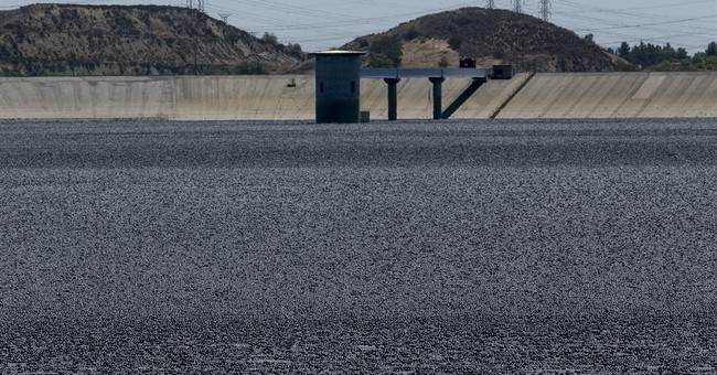 Los Angeles covers reservoir waters with 'shade balls'