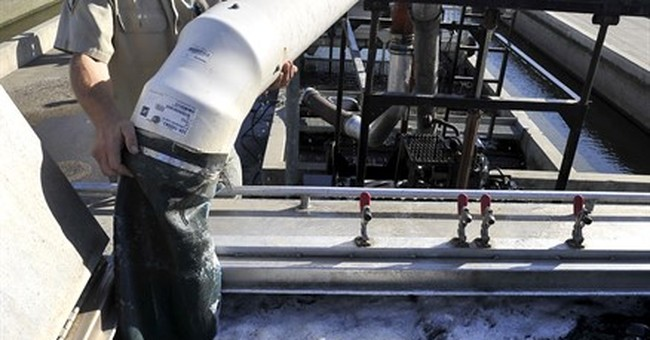 Drought forces trout to be trucked from California hatchery
