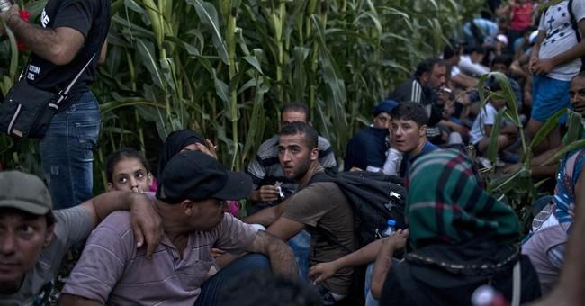 Europe's migration wave: Latest developments