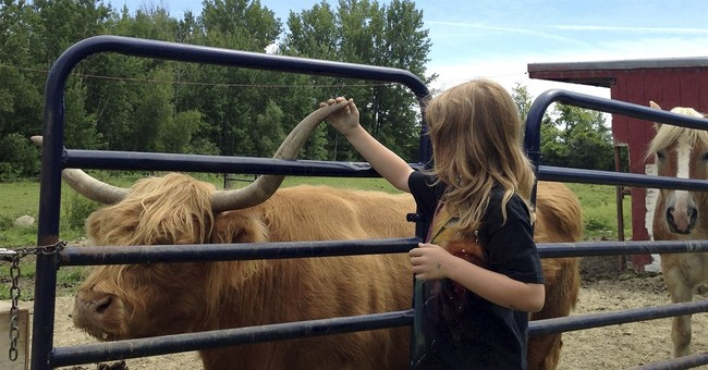 Agritourism growth sparks concerns over safety, liability