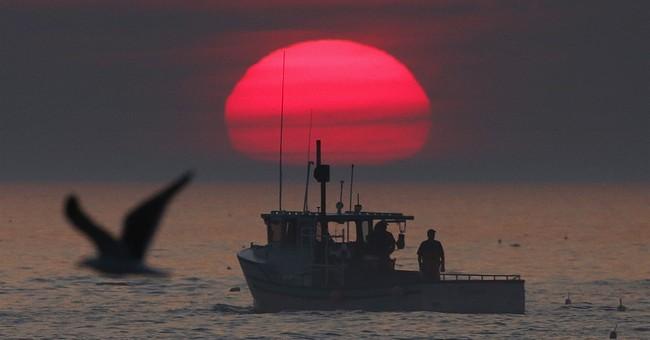Lobster population is shifting north; ocean warming blamed