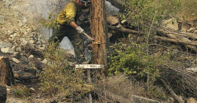 3 firefighters die in wildfire after vehicle crashes