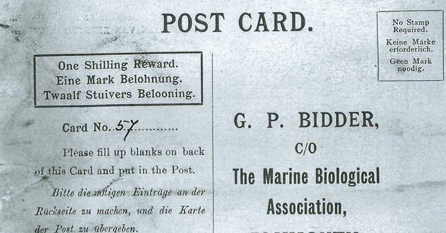 UK marine researchers receive 'oldest message in a bottle'