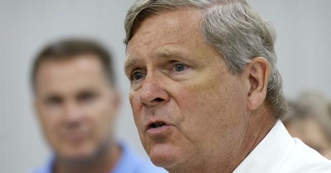 Ag secretary promises more sage grouse spending across West