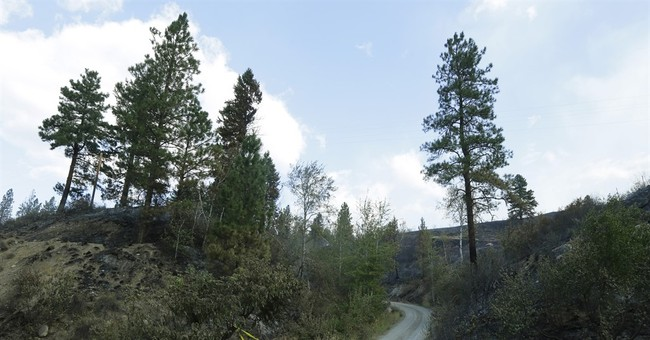 Documents: Winds shifted minutes before firefighters killed
