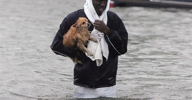 Associated Press photographers reflect on Katrina coverage