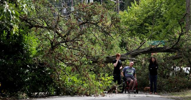Strong winds blamed for 2 deaths in Seattle area