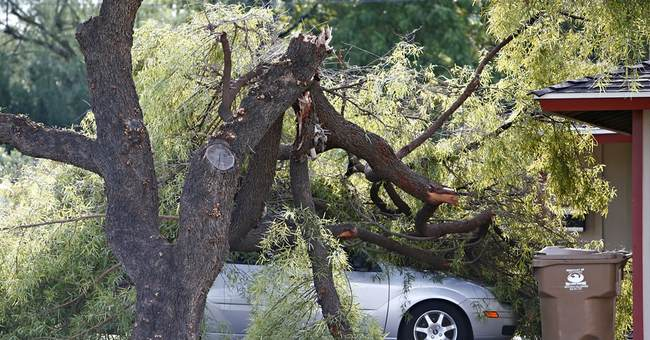 Extended power outages hit home for Phoenix residents