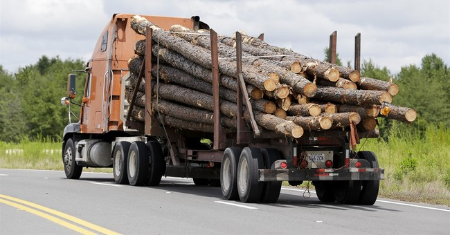 Timber business booming throughout northeast Florida