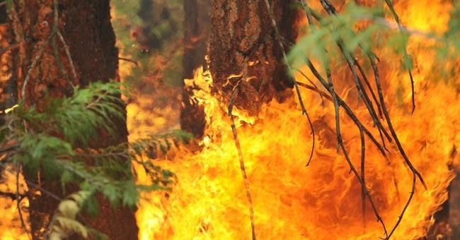 California wildfire to spew smoke through holiday weekend