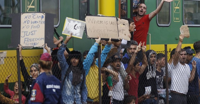 Bus fleet in Hungary carries migrants to Austrian welcome