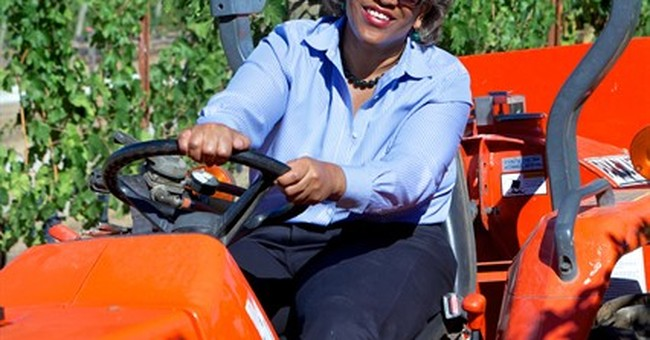 Minority winemakers look to change industry's stereotypes