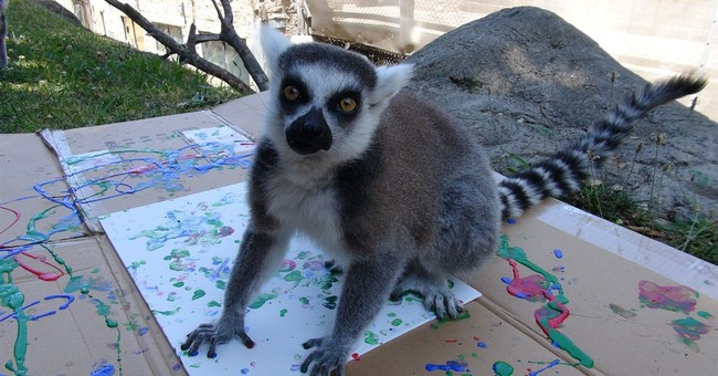 Oakland Zoo auctioning paintings by its animals