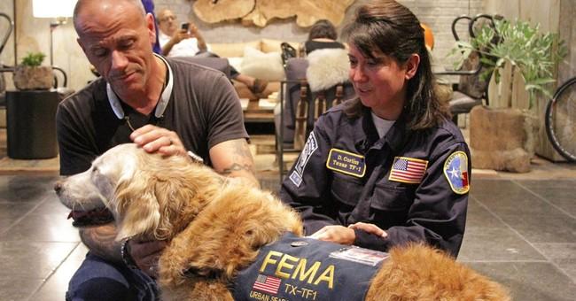 9/11 rescue dog celebrates 16th birthday in New York City