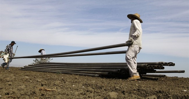 Irrigation district to clean water in milestone settlement