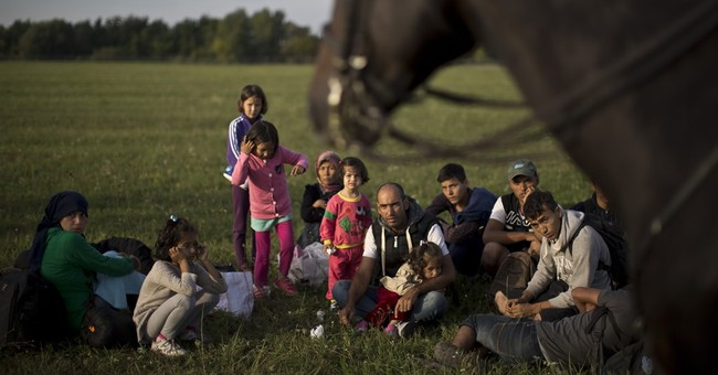 Hungary: Fence needed on Serbian border due to migrant push