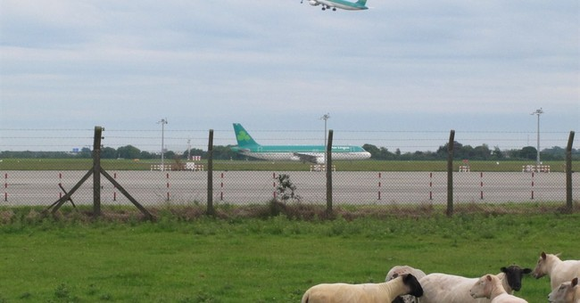 Aer Lingus backs takeover, needs Irish government support