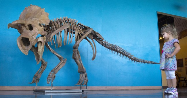 Colorado team says possible new dinosaur found in Montana