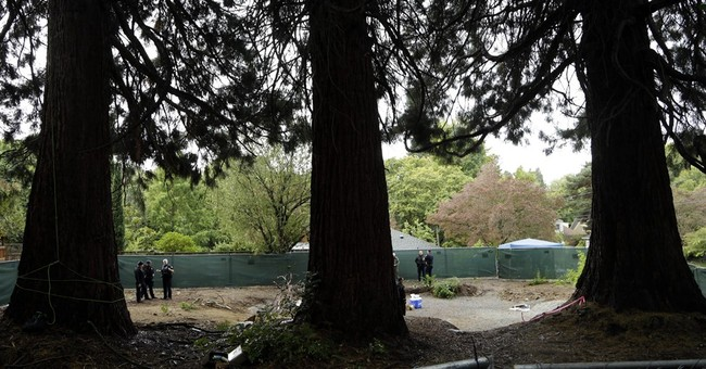Deal made to save 3 Portland trees; South Park creator helps
