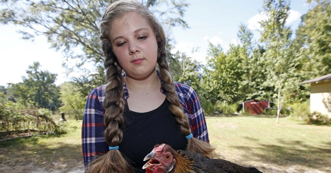 State fairs won't press broiler industry's bird flu luck