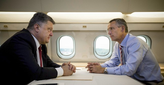Ukraine leader expresses wish to join NATO