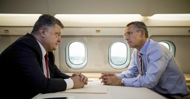 Ukraine leader expresses wish to join NATO