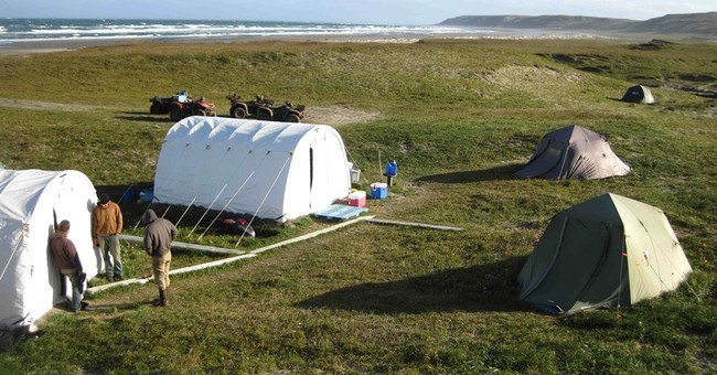 Fox removal effort closer to completion on Alaska islands