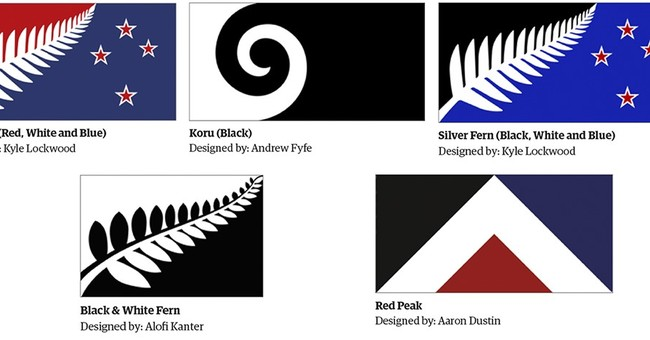 Red Peak jostles with 4 ferns for New Zealand's new flag