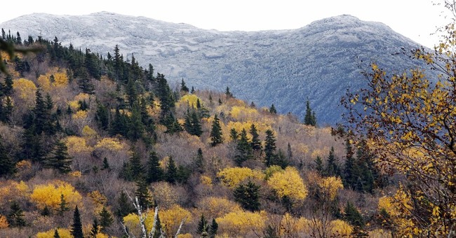 Peep this: New Hampshire launches new foliage tracker