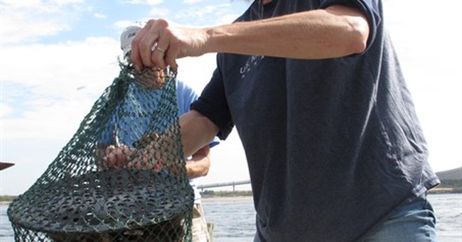 New Jersey wants another year to settle oyster research flap