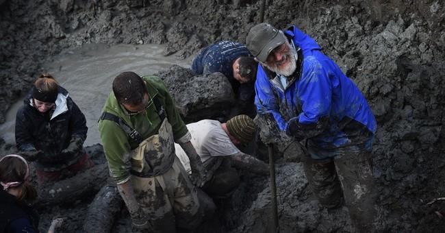 Farmer finds woolly mammoth bones in Michigan field