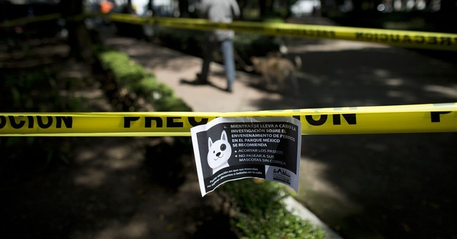 Mexico City investigates reports of dog poisoning at park
