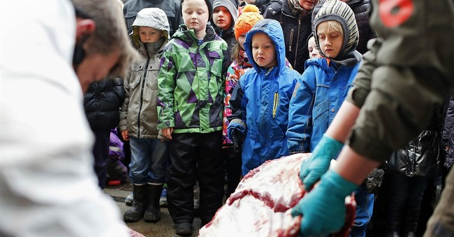 European body puzzled by uproar over Danish zoo dissection