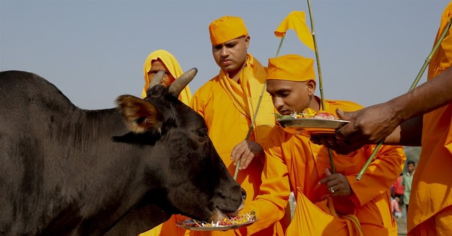 With Hindu party leading India, beef grows more political