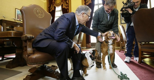 Washington governor honors dog who protected trapped friend